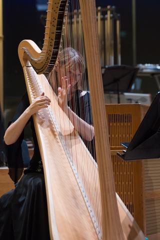 Marjan-de-Haer-harp