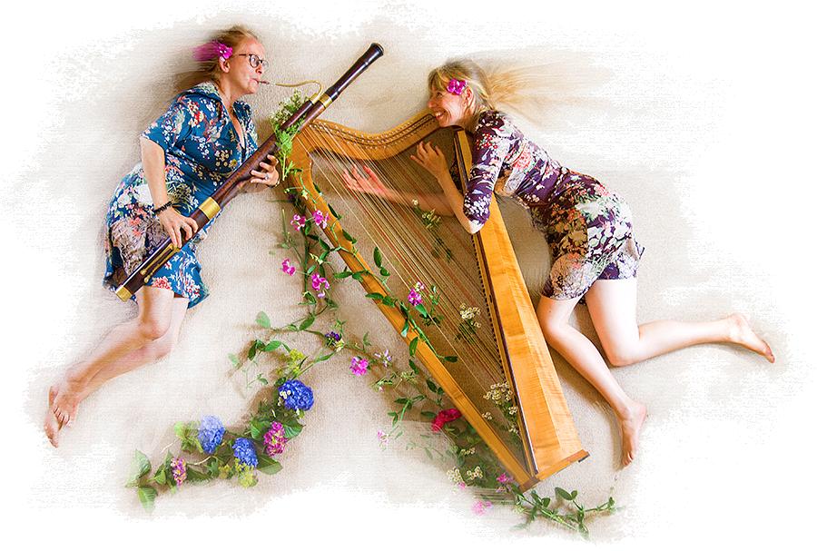 Fagot-Harp